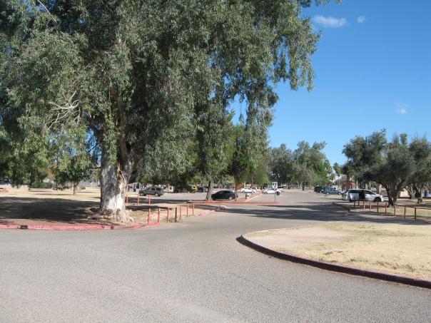 reid_park_big_cottonwood
